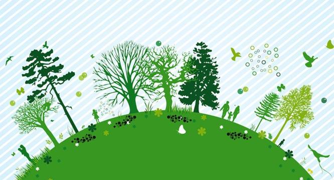 Laureaci konkursów ekologicznych
