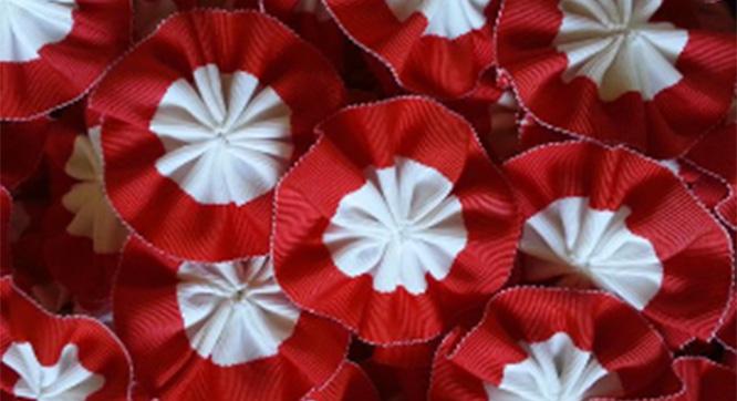 Zapraszamy napiknik charytatywny zokazji Święta Niepodległości