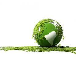 Szkolny Konkurs Ekologiczny