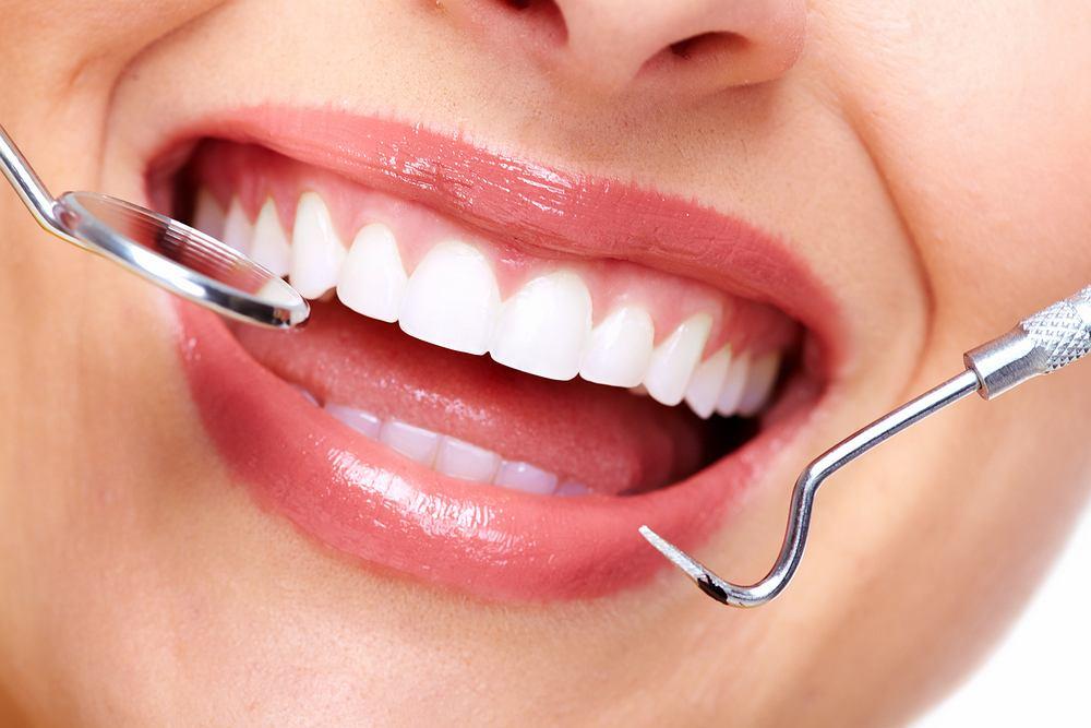 """""""Staszic"""" chodzi dodentysty – zapobieganie próchnicy zębów"""
